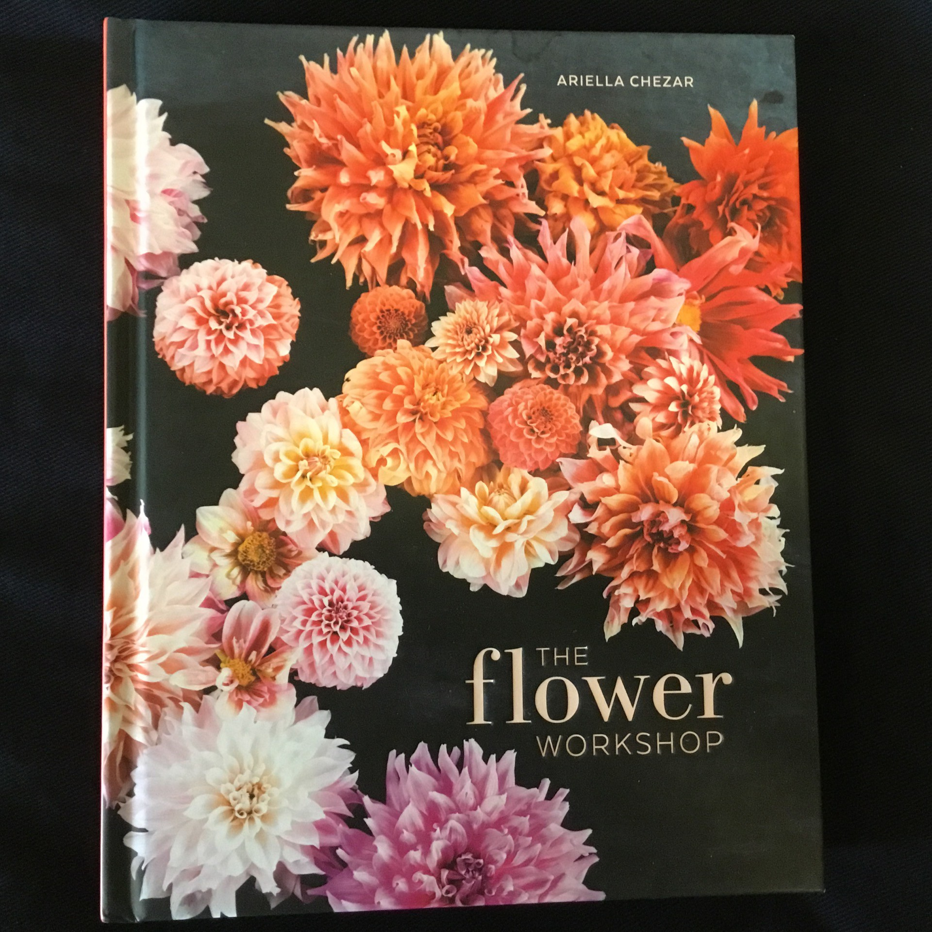 The Flower Workshop By Ariella Chezar Willow Stock